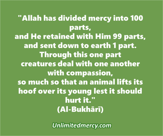 Mercy Thought quote 1a - Imam Abdul Latif Finch